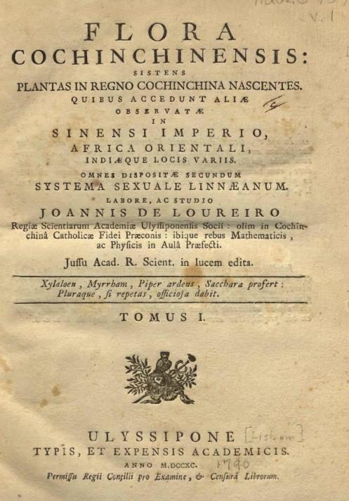 bicc80a-sacc81ch-flora-cochinchinensis-1626161867.jpg